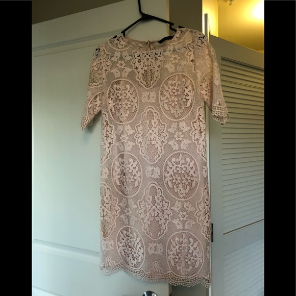 Zara Dresses & Skirts - Lace Blush Short Sleeve Dress